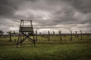 Auschwitz 13