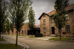 Auschwitz 20