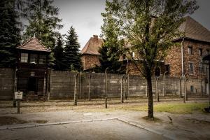 Auschwitz 22